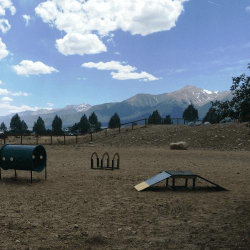 dogparksquare1